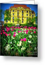 Vienna Residence Greeting Card