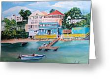 Vieques Puerto Rico Greeting Card