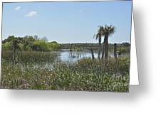 Viera Wetlands Greeting Card