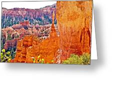 View At Beginning Of Navajo Trail In Bryce Canyon National Park-utah Greeting Card