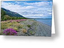 View Four Kluane Lake From Cottonwood Campground Near Destruction Bay-yk Greeting Card
