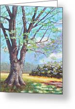 View From Barn Greeting Card