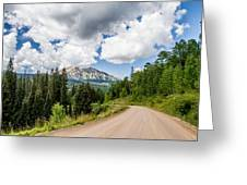 View From Kebler Pass Greeting Card