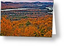 View From Mccauley Mountain Greeting Card