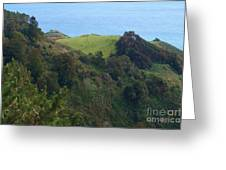 View From Nepenthe In Big Sur Greeting Card