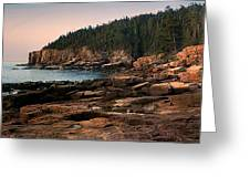 View From Ocean Drive Maine Greeting Card