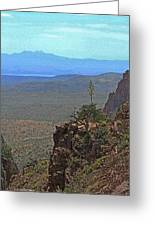 View From Parker Creek Canyon Greeting Card