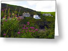 View From Port Isaac Greeting Card
