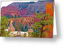 View From Queen's Garden Trail In Bryce Canyon National Park-utah Greeting Card