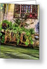 View From The Grand Canal China Greeting Card