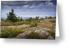 View From Top Of Cadilac Mountain In Acadia National Park Greeting Card