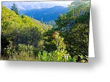View From Trail To West Point Inn On Mount Tamalpais-california  Greeting Card