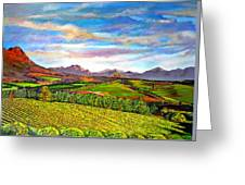 View From Warwick Vineyard Greeting Card
