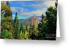 View Greeting Card