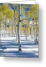 View Of Aspens In Fresh Winter Snow Greeting Card