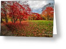 View Of Autumn Greeting Card