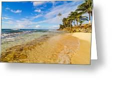 View Of Caribbean Coastline Greeting Card