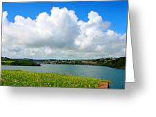 View Of Kinsale Greeting Card