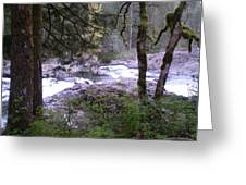 View Of Lucia Falls Greeting Card