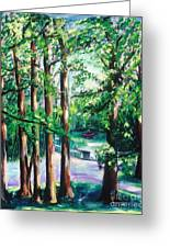 View Of Woodside Lake Greeting Card