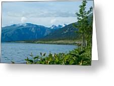View One Kluane Lake From Cottonwood Campground Near Destruction Bay-yk   Greeting Card