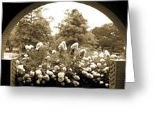 View To The Garden Greeting Card
