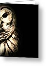 Vigilant In Darkness Greeting Card