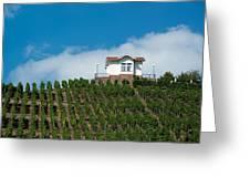 Villa In Vineyards Greeting Card