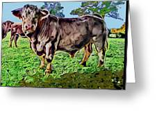 Vince The Bull Greeting Card