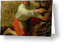 Vine Grower, 1628 Oil On Canvas Greeting Card