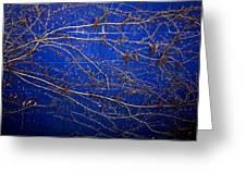 Vine On Blue Wall Greeting Card