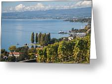 Vines Over Lake Geneva Greeting Card