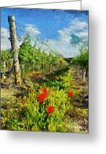 Vineyard And Poppies Greeting Card