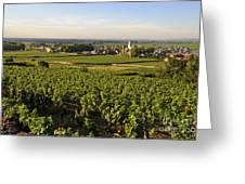 Vineyard And Village Of Pommard. Cote D'or. Route Des Grands Crus. Burgundy.france. Europe Greeting Card