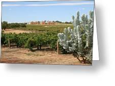 Vineyard And Winery Greeting Card
