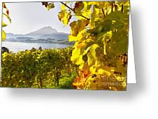 Vineyard At Lake Lucerne Greeting Card by George Oze