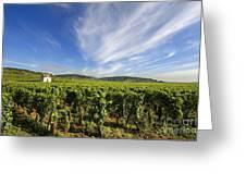 Vineyard Hut. Vineyard. Cote De Beaune. Burgundy. France. Europe Greeting Card