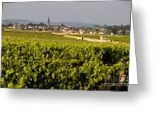 Vineyard In Front Of The Village Of Meursault. Burgundy Wine Road. Cote D'or.burgundy. France. Europ Greeting Card by Bernard Jaubert