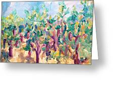 Vineyard In The Afternoon Sun Greeting Card