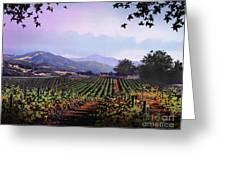 Vineyard Napa Sonoma Greeting Card by Robert Foster