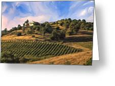 Vineyard Near Avila Beach Greeting Card