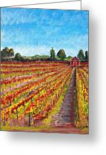 Vineyard On Dry Creek Road Greeting Card