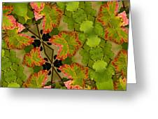 Vineyard Quilt Greeting Card