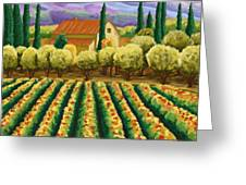 Vineyard With Olives Tuscany Greeting Card