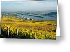 Vineyards Near A Town, Rudesheim Greeting Card