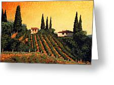 Vineyards Of Tuscany Greeting Card