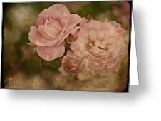 Vintage Beauties Greeting Card
