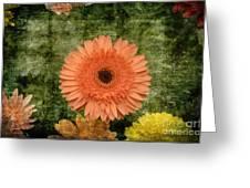 Vintage Blooms Greeting Card