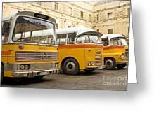 Vintage British Buses In Valetta Malta Greeting Card