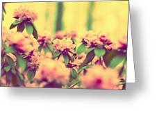 Vintage Bumblebee's Bush Greeting Card